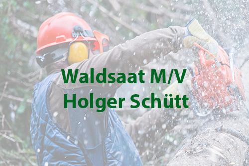 Waldsaat M/V Holger Schütt