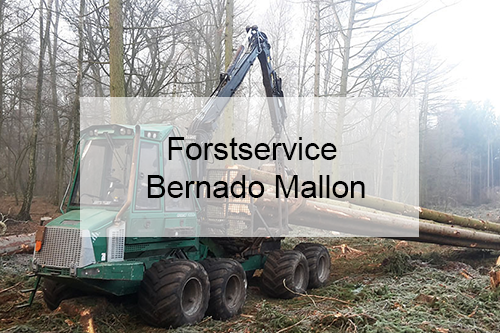 Forstservice Bernado Mallon